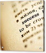Definition Of Success Acrylic Print by Konstantin Sutyagin