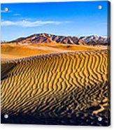 Desert Lines Acrylic Print by Chad Dutson