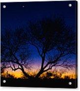 Desert Silhouette Acrylic Print by Chad Dutson