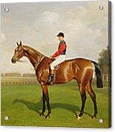 Diamond Jubilee Winner Of The 1900 Derby Acrylic Print by Emil Adam