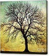 Digital Art Tree Silhouette Acrylic Print by Natalie Kinnear