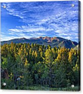 Distant Giant Acrylic Print by Thomas Zimmerman