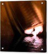 Diving Acrylic Print by Gun Legler