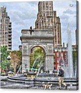 Dog Walking At Washington Square Park Acrylic Print by Randy Aveille