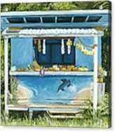 Dolphin Bar Acrylic Print by Stacy Vosberg