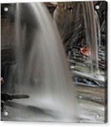 Double Cascade Acrylic Print by Darleen Stry
