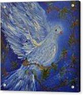 Dove Spirit Of Peace Acrylic Print by Louise Burkhardt