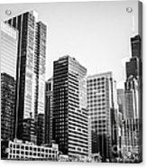 Downtown Chicago Buildings In Black And White Acrylic Print by Paul Velgos