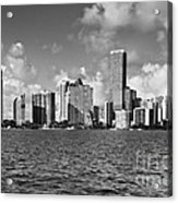 Downtown Miami Acrylic Print by Eyzen Medina