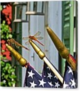 Dragonflies In Full Salute Acrylic Print by Nancy Patterson