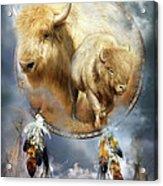 Dream Catcher - Spirit Of The White Buffalo Acrylic Print by Carol Cavalaris