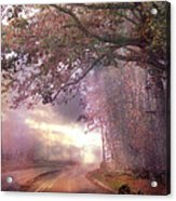 Dreamy Pink Nature Landscape - Surreal Foggy Scenic Drive Nature Tree Landscape  Acrylic Print by Kathy Fornal