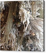 Dreamy Trees Ethereal Winter White Snow On Trees Nature Winter White Acrylic Print by Kathy Fornal