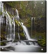 Dripping Wet Acrylic Print by Darren  White
