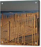 Dune Fences At First Light I Acrylic Print by Steven Ainsworth