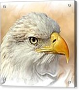 Eagle6 Acrylic Print by Marty Koch