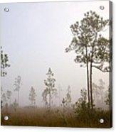 Early Morning Fog Acrylic Print by Rudy Umans