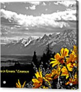 Earth Laughs In Flowers Acrylic Print by Dan Sproul