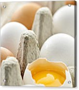 Eggs In Box Acrylic Print by Elena Elisseeva