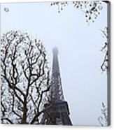 Eiffel Tower - Paris France - 011318 Acrylic Print by DC Photographer