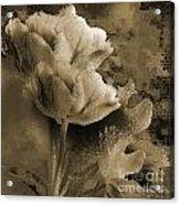 Elegance Acrylic Print by Yanni Theodorou