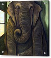 Elephant In The Room Acrylic Print by Leah Saulnier The Painting Maniac