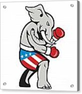 Elephant Mascot Boxer Boxing Side Cartoon Acrylic Print by Aloysius Patrimonio