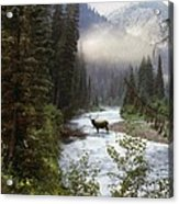 Elk Crossing Acrylic Print by Leland D Howard
