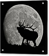 Elk Silhouette On Moon Acrylic Print by Ernie Echols