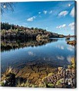 Elsi Reservoir Acrylic Print by Adrian Evans