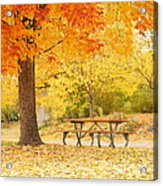 Empty Park On A Fall Day Acrylic Print by Yoshiko Wootten