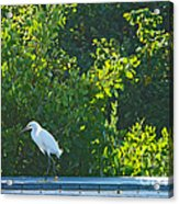End Of Ramp Acrylic Print by Anne Kitzman
