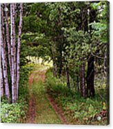 End Of The Road Acrylic Print by Tam Graff
