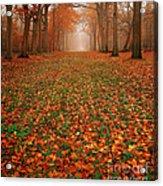 Endless Autumn Acrylic Print by Photodream Art