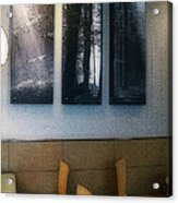 Enjoying Our Beautiful Woodlands Acrylic Print by MJ Olsen