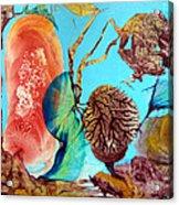 Ernsthaftes Spiel Im Innerem Erdteil Acrylic Print by Otto Rapp