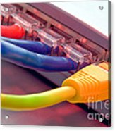 Ethernet Acrylic Print by Olivier Le Queinec