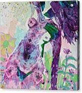 Evanescence Acrylic Print by Diane Fine