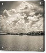 Everglades Lake 6919 Bw Acrylic Print by Rudy Umans