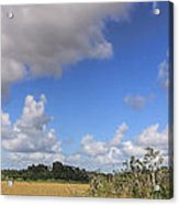 Everglades Landscape Panorama Acrylic Print by Rudy Umans