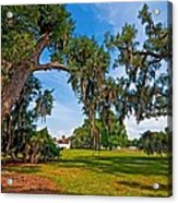 Evergreen Plantation II Acrylic Print by Steve Harrington