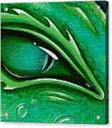 Eye Of The Green Algae Dragon Acrylic Print by Elaina  Wagner