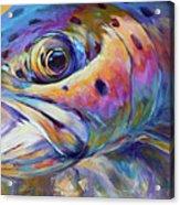 Face Of A Rainbow- Rainbow Trout Portrait Acrylic Print by Savlen Art