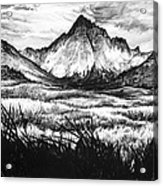 Faith As A Mustard Seed Acrylic Print by Aaron Spong