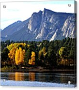 Fall At Lake Estes Acrylic Print by Tranquil Light  Photography