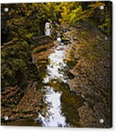 Fall Colors Acrylic Print by Eduard Moldoveanu