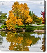 Fall Fort Collins-2 Acrylic Print by Baywest Imaging