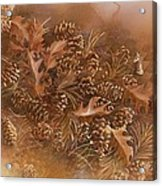 Fall Pinecones Acrylic Print by Paula Marsh