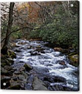 Fall Seclusion Acrylic Print by Skip Willits