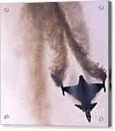 Fallen Angel Acrylic Print by Angel  Tarantella